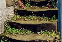 Steps/stairs / by Elizabeth McCartney