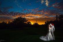 Sunset Wedding Photos / by Sasha Yevelev