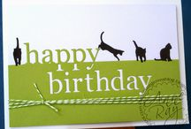 cats cards