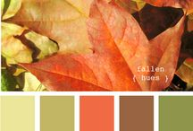 Living Room Hues / by Jeannette Kimmel Swain