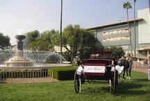 Weddings at Santa Anita / by Santa Anita