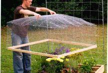 odling med staket