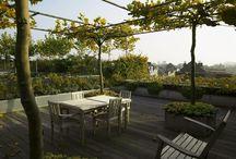 Garden terrace/Urban Condo