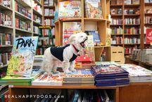 Gizmo - Strand Bookstore Shop Dog / See the photo story of Gizmo, the Strand Bookstore shop dog!