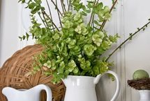 Spring Decorating  / by Gail Becraft