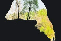 Ode to the Ozarks / Jam Up Cave, White Creek... these are the places that inspire our brew names.
