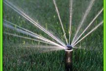 Szolgáltatásaink / Öntözéstechnika, kerti tavak, medencék, burkolás, kertgondozás, gyepszerviz, építőipari munkák, stb.