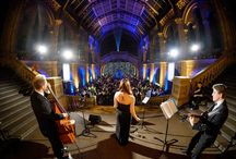 Jazz Bands for Weddings and Parties / We provide a range of classy jazz bands and musicians for weddings, parties and other events in London.  From solo jazz piano to a full big band, there are jazz trios, Blue Note jazz bands, swing bands and other vintage live jazz performers.