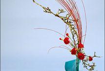 Floral arrangements / Flowers, vases, decorations