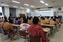 Japan_Culture_Sumo