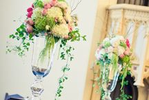 Hydrangeas...My Favorite / by Kelly Odom