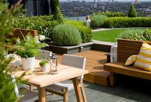 ogród dachowy