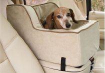 locuri ptr animale în mașină
