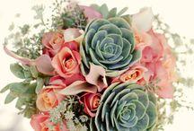 Wedding: Bouquet / wedding bouquet, arrangments