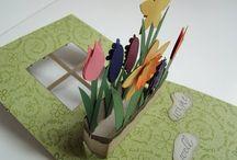 Craft: Pop up cards