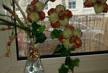 Flores capsulas