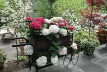 Garden - Flowers/Vegetables / by Heureux Pour Tourjours