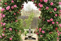 bahçe teras dekorasyonu