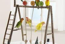 Birdiess