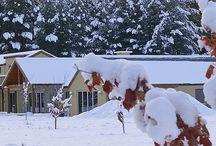 Wanaka Winter / Wanaka is a stunning winter wonderland.