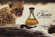WILD ELIXIR BY SHAKIRA / by Shakira