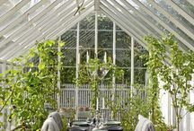 greenhouse project / greenhouse inspiration