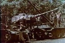 Panzer IV in Color