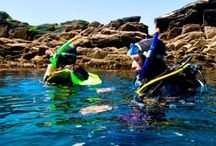 Snorkeling on Ireland / Visit our site www.snorkelaroundtheworld.com Build up our snorkeling community :)
