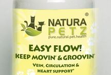 Easy Flow / Easy Flow is used holistically as a circulatory, cardio & immune tonic to support optimal cardiac & circulatory function to all parts of the body; to encourage proper valve function; to support the strength of blood vessels, veins, arteries; to promote muscle cell healing & regeneration; to reduce or increase blood flow & volume as needed; for varicose veins, heavy, swollen legs, aching joints & phlebitis; to increase blood supply & contraction force to the heart by dilating coronary arteries.
