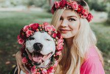 kutya gazdi fotózás