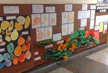 pumpkin inquiry
