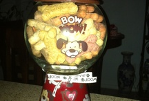 Dog Treat holder jars
