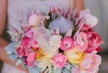 Bouquets / Flowers & Shrubs