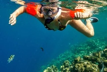 Things to do in Jamaica / by Heather Kroeber