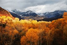 Fall at Smith Fork Ranch / The aspen and oak trees turning a glowing shade of gold and red tell us that the fall season has begun here at Smith Fork Ranch, where an unforgettable autumn escape awaits.