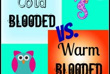 Warm vs cold blooded