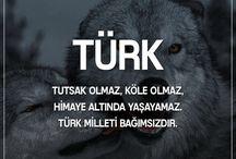 Kahramanlar ve Türklük