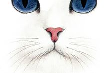 Katten tekenen