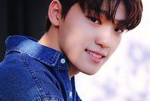 Dino - Lee Chan