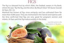 Islamic Food & Medicine