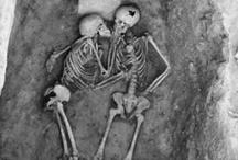 Csontvázak