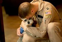 Army : valor, amor, dolor.