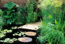 The Backyard - Like / by Jacinda Crawmer