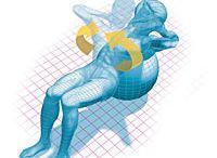 training anatomy