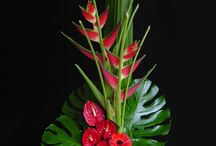 Tropical Inspired Floral Arrangements