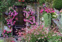 çiçek ve bahçe