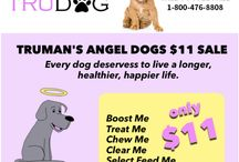 Special Promotions / TruDog Special Promotions.  We Welcome You To Try our All Natural, Health Focused Pet Solutions :)