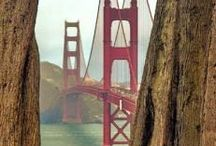 Spidey's  San Francisco