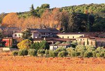 Château Sainte Roseline / Visite du vignoble et des chais au Château Sainte Roseline en Côte de Provence en Provence Réservez avec winetourbooking.com