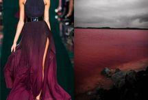 Elie Saab's creations